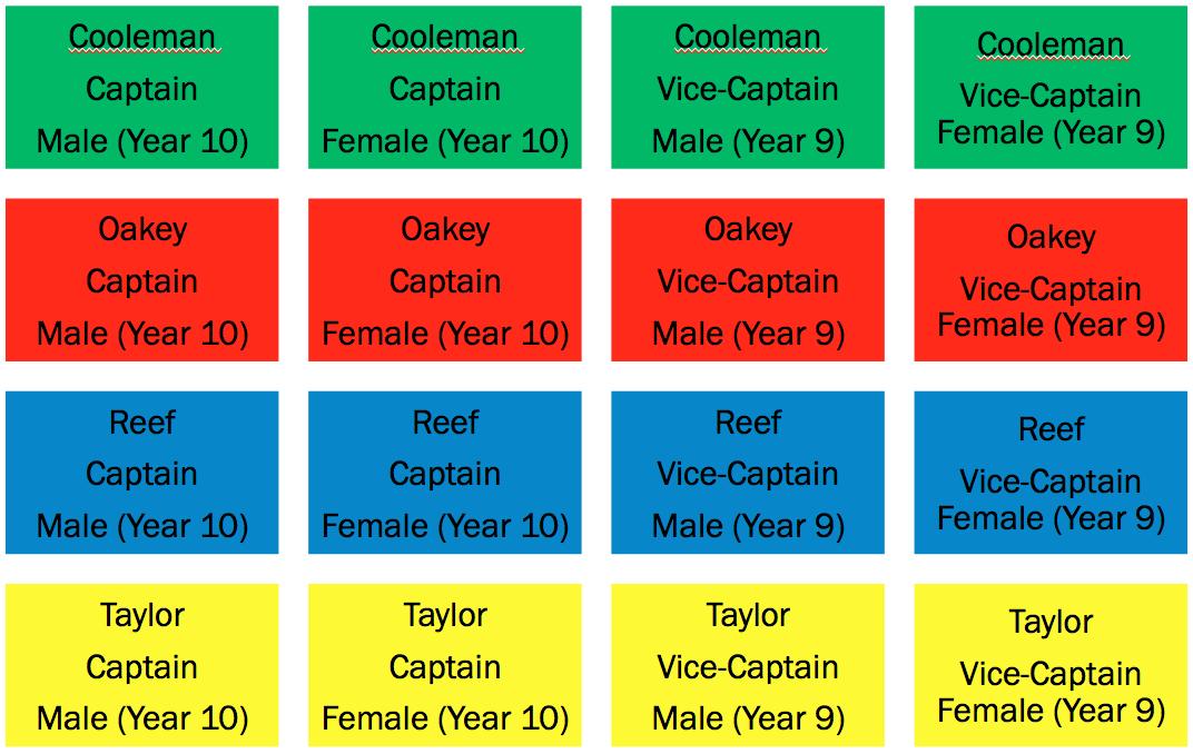 House Captain Structure
