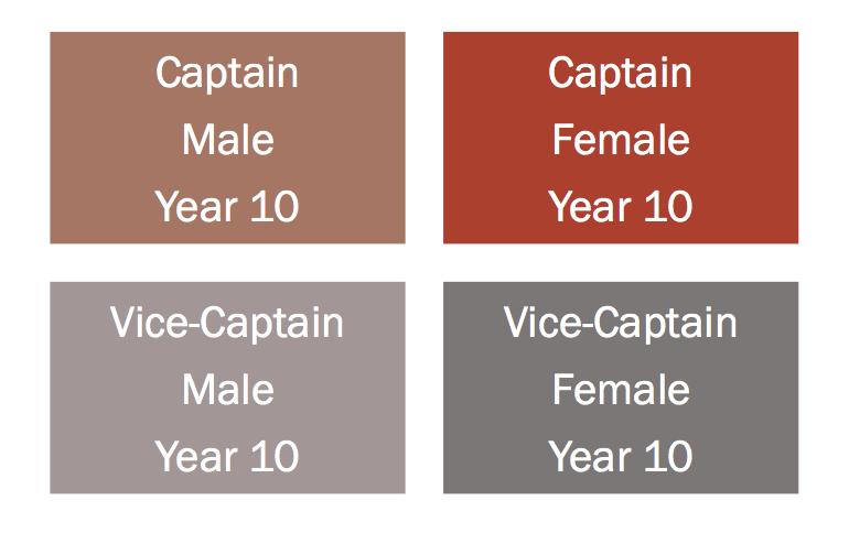 Captains Structure